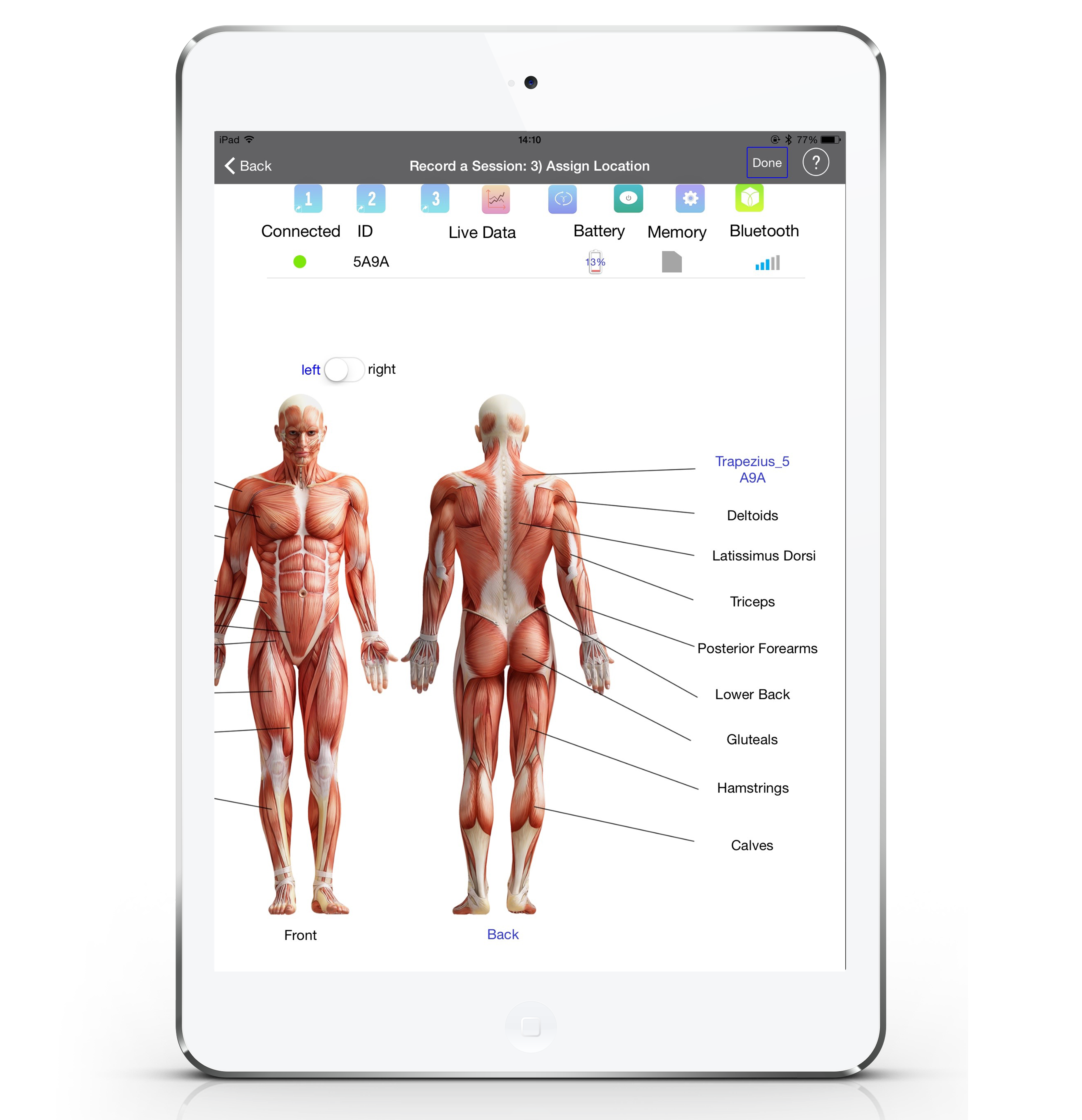 somaxis sensor used to measure muscle energy | innovation essence, Muscles